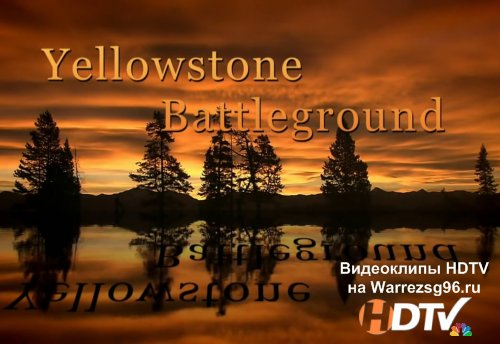 National Geographic - Долина Гризли (Yellowstoned Battleground) HD 1280x720p