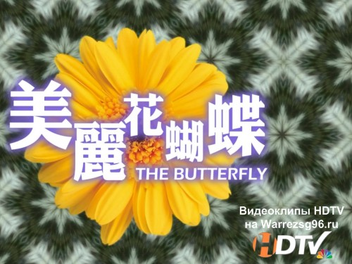 HDclub - The Butterfly Full HD Demo 1920x1080p