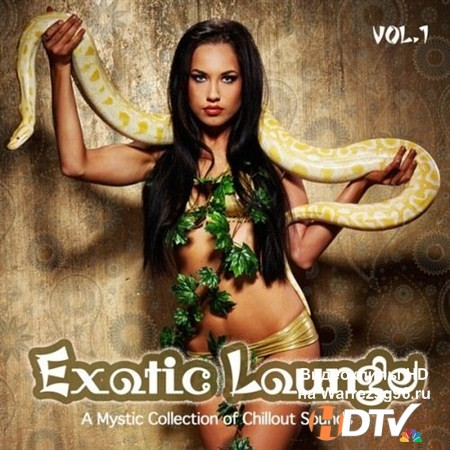 VA - Exotic Lounge Vol.1 (2013) MP3
