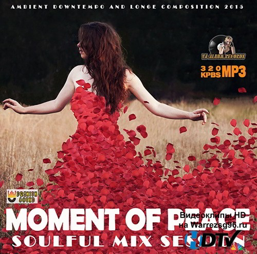 Moment Of Peace: Soulful Mix Session (2015) MP3