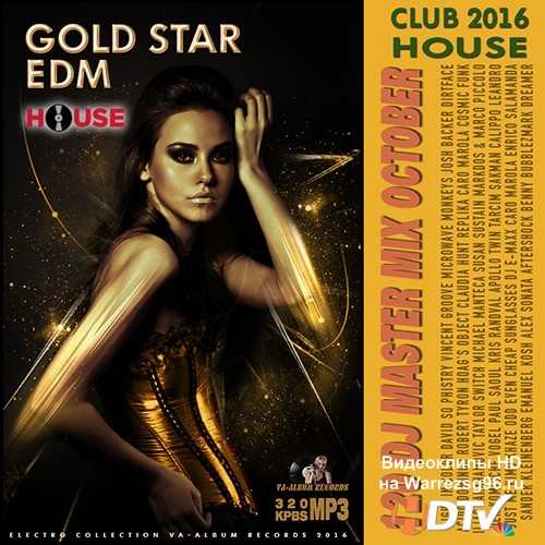 Gold Star EDM: DJ Master Mix (2016)